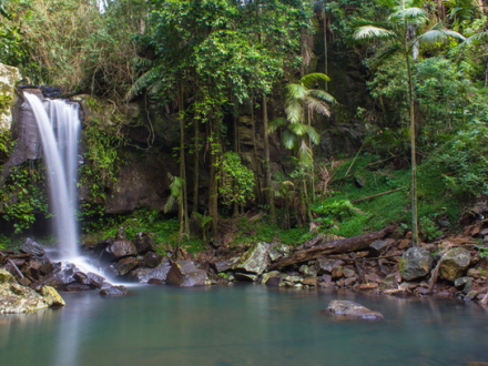 MT Tamborine Waterfall